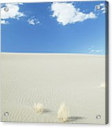 Blue Sky Over Sand Dune Acrylic Print