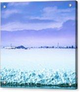 Blue Sky, White Field Acrylic Print