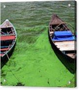 Boats On Algae, In Santarem, Brazil. Acrylic Print