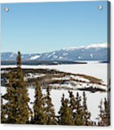 Bove Island On Windy Arm In Tagish Lake Yukon Acrylic Print