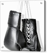 Boxing Gloves Hanging Against White Acrylic Print