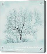 Breath Of Winter Acrylic Print