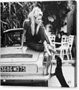 Brigitte Bardot With Dachshund Acrylic Print