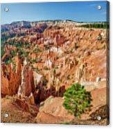 Bryce Canyon Sunrise Point Acrylic Print