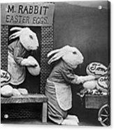 Bunny Business Acrylic Print
