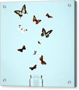 Butterflies Escaping From Jar Acrylic Print