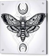 Butterfly - Vector Acrylic Print