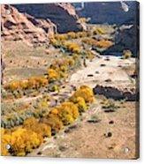Canyon De Chelley Autumn Acrylic Print