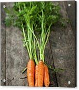 Carrot Acrylic Print