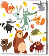 Cartoon Forest Animal Characters. Wild Acrylic Print