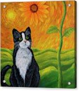 Cat And Sunflower Acrylic Print