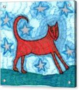 Cat By Starlight Acrylic Print