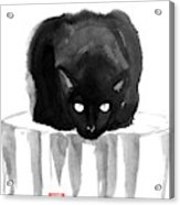 Cat On Wood Acrylic Print