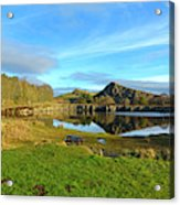 Cawfield Quarry And Hadrians Wall In Northumberland Acrylic Print