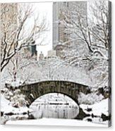 Central Park, New York Acrylic Print