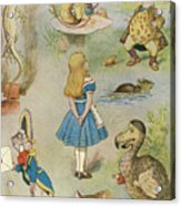 Characters From Alice In Wonderland  Acrylic Print
