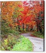 Chikanishing Road In Fall Acrylic Print