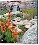 Chikanishing Trail Boardwalk Acrylic Print