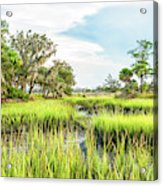 Chisolm Island - Marsh At Low Tide Acrylic Print