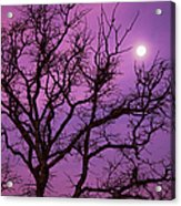 Christmas Morning Moon Acrylic Print