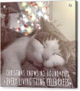 Christmas Nap Quote Acrylic Print