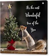 Christmas Squirrel Most Wonderful Time Of The Year Square Acrylic Print