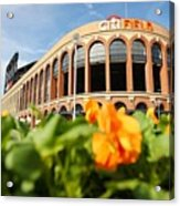 Citifield Preview Acrylic Print