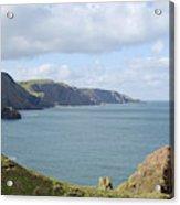 cliffs and coast at St. Abbs Head, Berwickshire Acrylic Print