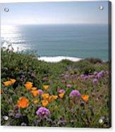 Coastal Bouquet Acrylic Print
