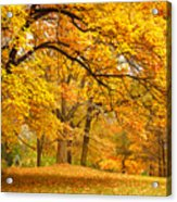 Collection Of Beautiful Colorful Autumn Acrylic Print