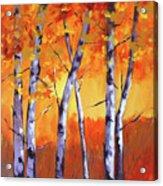 Color Forest Landscape Acrylic Print