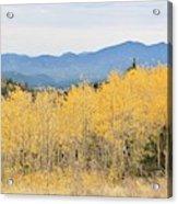 Colorado Autumn In The Mountains Acrylic Print