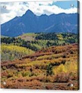 Colorado Color Bonanza Acrylic Print