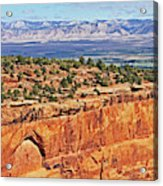 Colorado National Monument Trees Rock Formations 3087 Acrylic Print