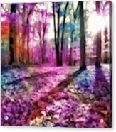 Colorful Trees Xii Acrylic Print