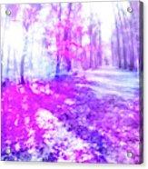 Colorful Trees Xv Acrylic Print