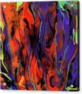 Colorful Vision 1 Acrylic Print