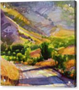 Columbia County Backroads Acrylic Print