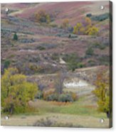 Copper Hills Autumn Acrylic Print