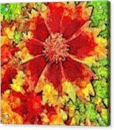 Coreopsis Abstract Acrylic Print