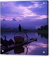 Cormorant On Li River Acrylic Print