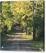 Country Road In Fall Acrylic Print