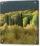 Crested Butte Colorado Fall Colors Panorama - 1 Acrylic Print