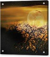 Crows Nest Full Moon Acrylic Print