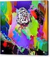 Da11 Da11475 Acrylic Print