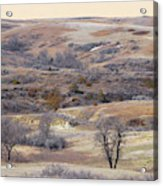 Dakota Prairie Slope Reverie Acrylic Print