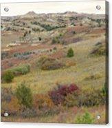 Dakota West Prairie Treasure Acrylic Print