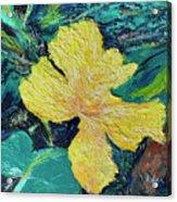 Dancing Flower Acrylic Print