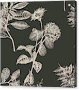 Dark Botanics  Acrylic Print