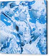 Deep Blue Acrylic Print